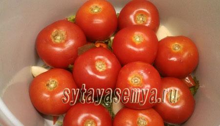 solenye-pomidory-s-gorchicej-4