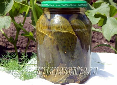 Маринованные огурцы с водкой на зиму, рецепт с фото