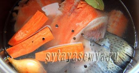 Уха в мультиварке из семги: рецепт с фото
