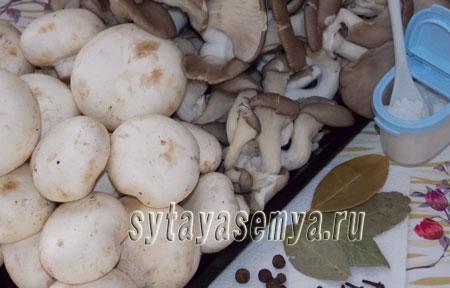 Грибная икра с овощами на зиму, рецепт с фото