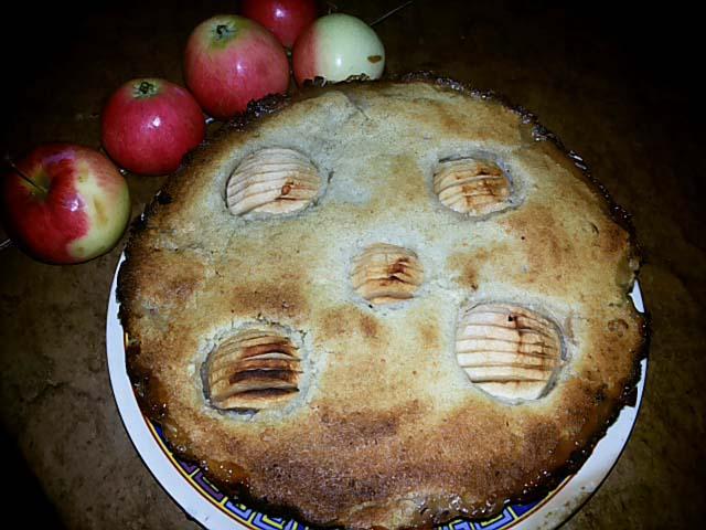 Рецепт шарлотки с яблоками в духовке (пышный): фото пошагово